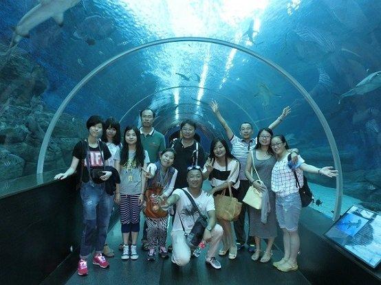 名胜世界的海洋馆2(SEA Aquarium)